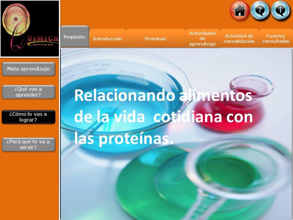 Propósito Actividad de consolidación Actividad de consolidación Fuentes consultadas Fuentes consultadas Introducción Proteínas Actividades de aprendiz