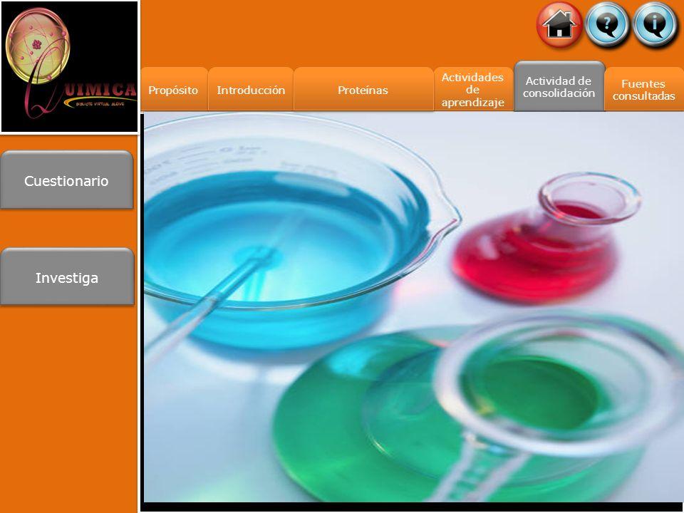 Actividades de aprendizaje Actividades de aprendizaje Propósito Introducción Actividad de consolidación Fuentes consultadas Fuentes consultadas Cuestionario Investiga Proteínas