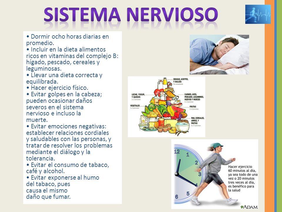 Dormir ocho horas diarias en promedio. Incluir en la dieta alimentos ricos en vitaminas del complejo B: hígado, pescado, cereales y leguminosas. Lleva