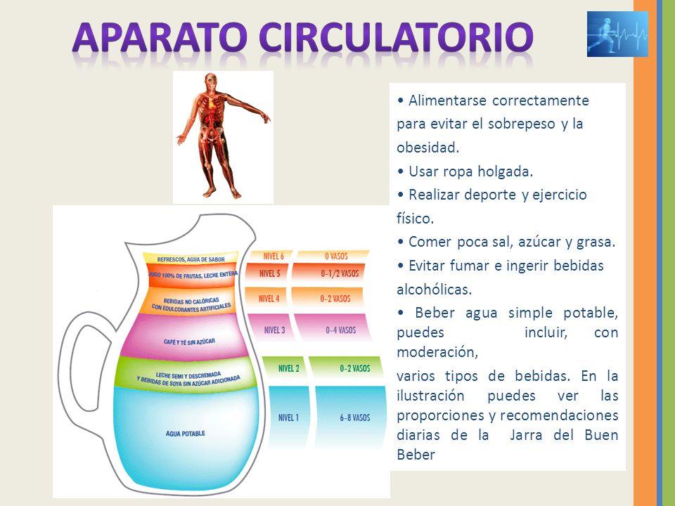 Alimentarse correctamente para evitar el sobrepeso y la obesidad. Usar ropa holgada. Realizar deporte y ejercicio físico. Comer poca sal, azúcar y gra