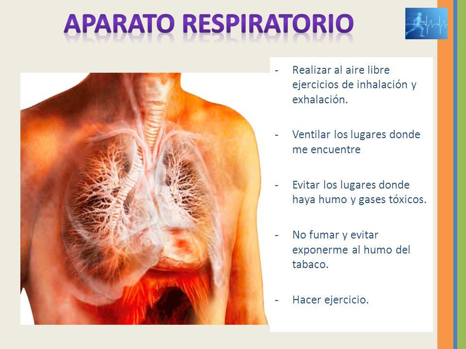 -Realizar al aire libre ejercicios de inhalación y exhalación. -Ventilar los lugares donde me encuentre -Evitar los lugares donde haya humo y gases tó
