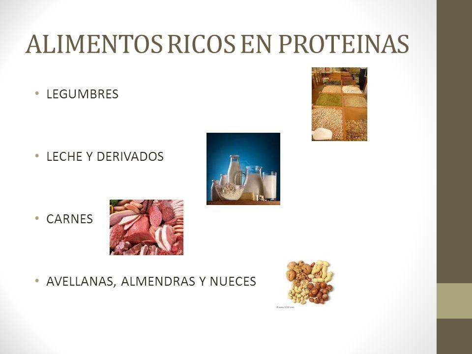 ALIMENTOS RICOS EN PROTEINAS LEGUMBRES LECHE Y DERIVADOS CARNES AVELLANAS, ALMENDRAS Y NUECES