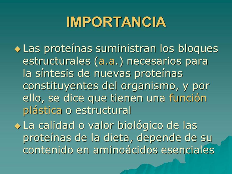 IMPORTANCIA Las proteínas suministran los bloques estructurales (a.a.) necesarios para la síntesis de nuevas proteínas constituyentes del organismo, y
