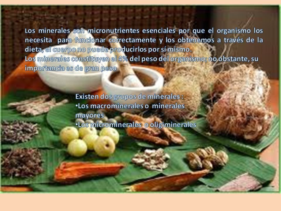 Cobre Función Plantas medicinales Alimentos Fundamental para el desarrollo y mantenimiento de huesos, tendones, tejido conectivo y el sistema vascular.