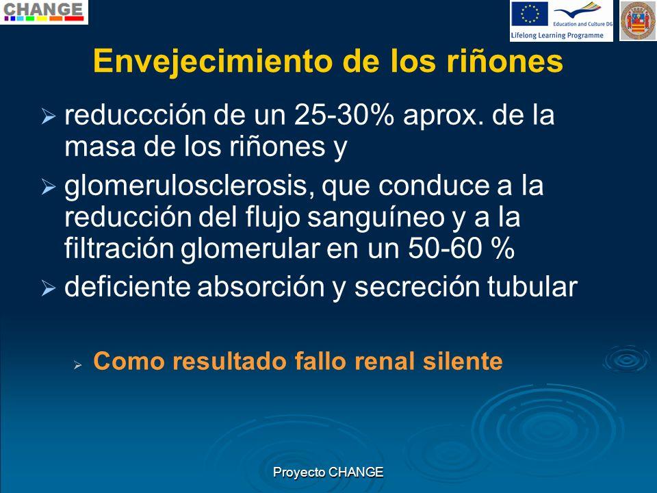 Envejecimiento de los riñones reduccción de un 25-30% aprox. de la masa de los riñones y glomerulosclerosis, que conduce a la reducción del flujo sang