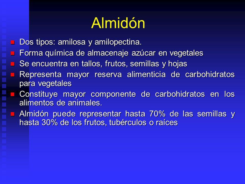 Almidón Dos tipos: amilosa y amilopectina. Dos tipos: amilosa y amilopectina. Forma química de almacenaje azúcar en vegetales Forma química de almacen