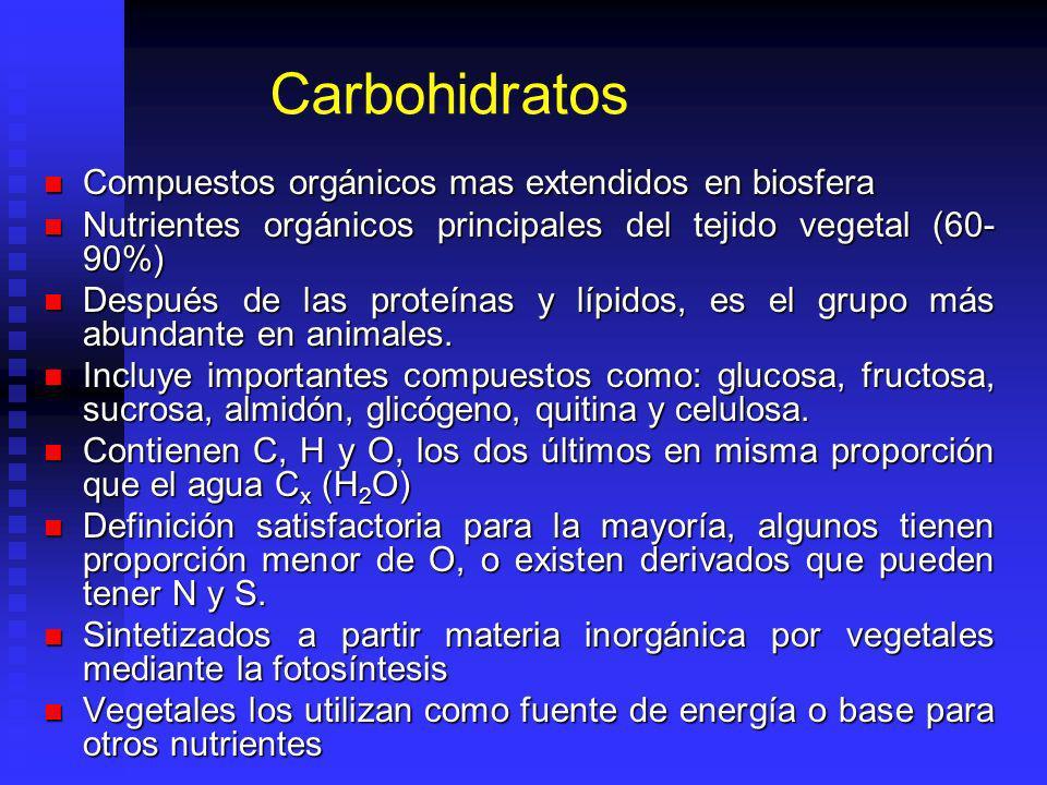 Carbohidratos Compuestos orgánicos mas extendidos en biosfera Compuestos orgánicos mas extendidos en biosfera Nutrientes orgánicos principales del tejido vegetal (60- 90%) Nutrientes orgánicos principales del tejido vegetal (60- 90%) Después de las proteínas y lípidos, es el grupo más abundante en animales.