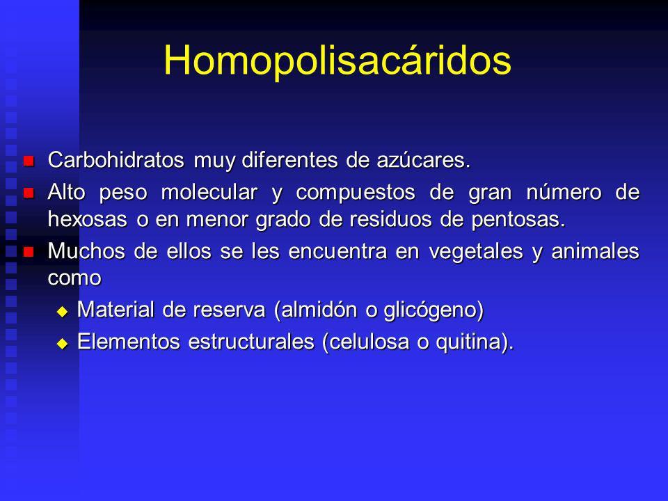 Homopolisacáridos Carbohidratos muy diferentes de azúcares. Carbohidratos muy diferentes de azúcares. Alto peso molecular y compuestos de gran número