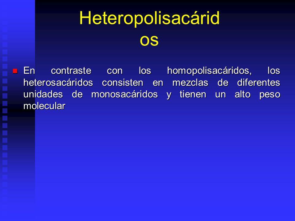 Heteropolisacárid os En contraste con los homopolisacáridos, los heterosacáridos consisten en mezclas de diferentes unidades de monosacáridos y tienen un alto peso molecular En contraste con los homopolisacáridos, los heterosacáridos consisten en mezclas de diferentes unidades de monosacáridos y tienen un alto peso molecular