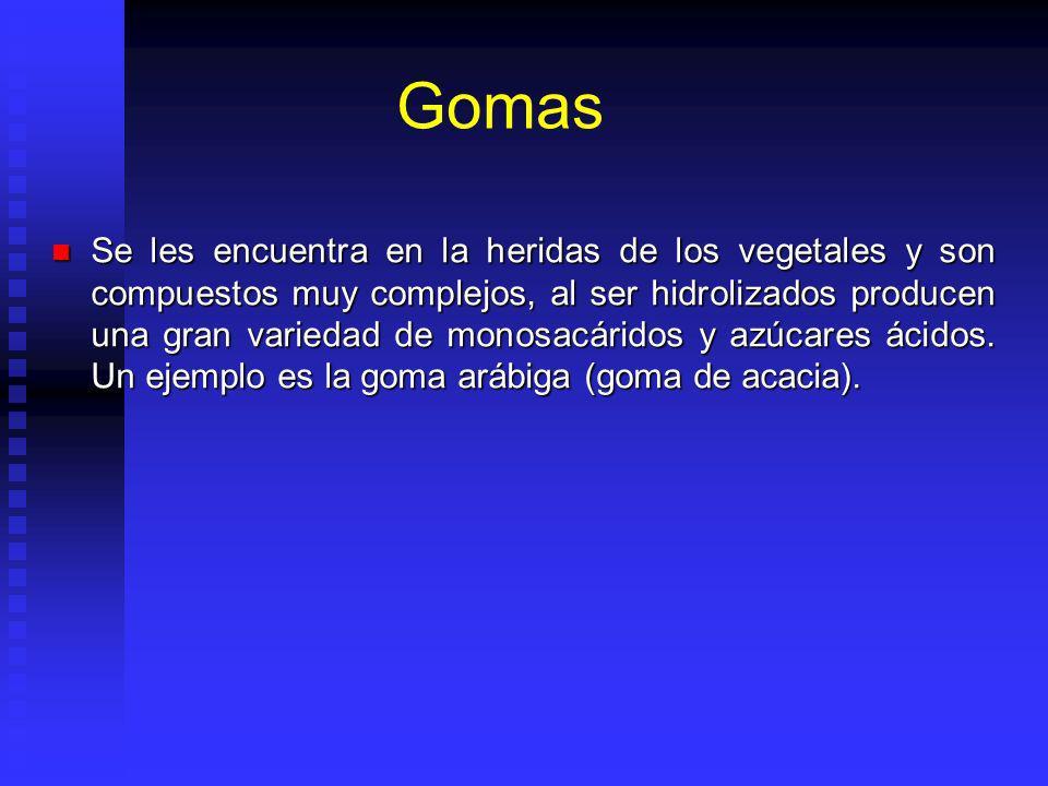 Gomas Se les encuentra en la heridas de los vegetales y son compuestos muy complejos, al ser hidrolizados producen una gran variedad de monosacáridos y azúcares ácidos.