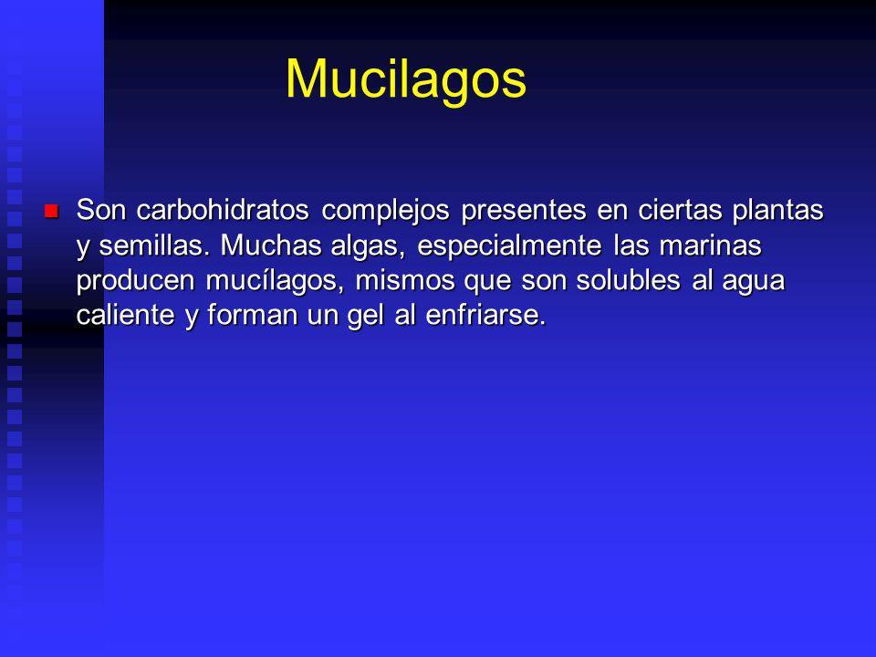 Mucilagos Son carbohidratos complejos presentes en ciertas plantas y semillas. Muchas algas, especialmente las marinas producen mucílagos, mismos que