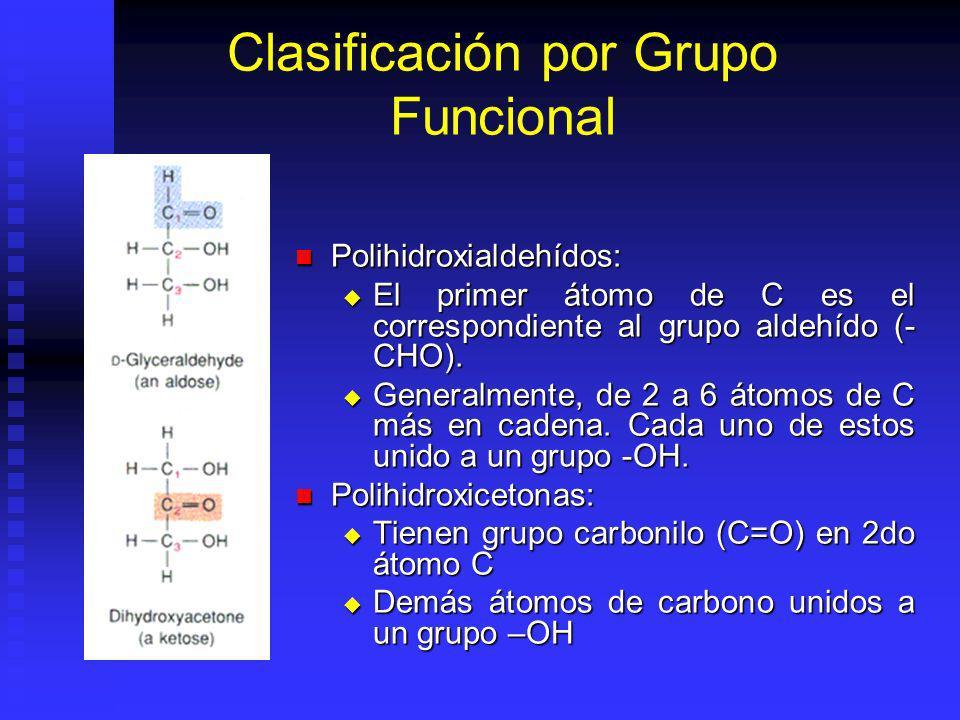 Clasificación por Grupo Funcional Polihidroxialdehídos: Polihidroxialdehídos: El primer átomo de C es el correspondiente al grupo aldehído (- CHO).
