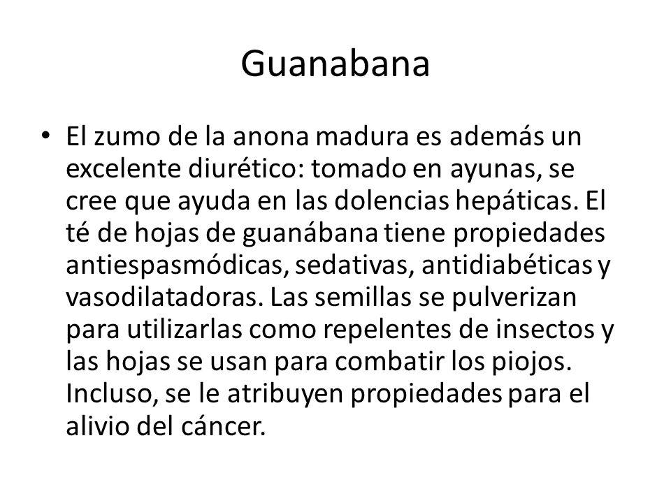 Guanabana El zumo de la anona madura es además un excelente diurético: tomado en ayunas, se cree que ayuda en las dolencias hepáticas. El té de hojas