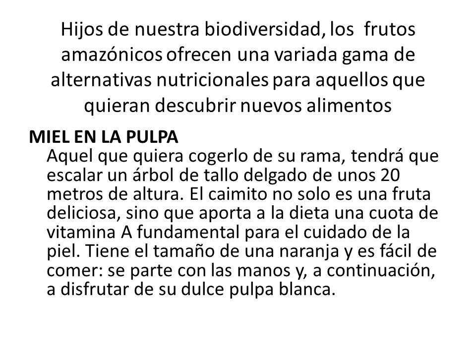 Hijos de nuestra biodiversidad, los frutos amazónicos ofrecen una variada gama de alternativas nutricionales para aquellos que quieran descubrir nuevo
