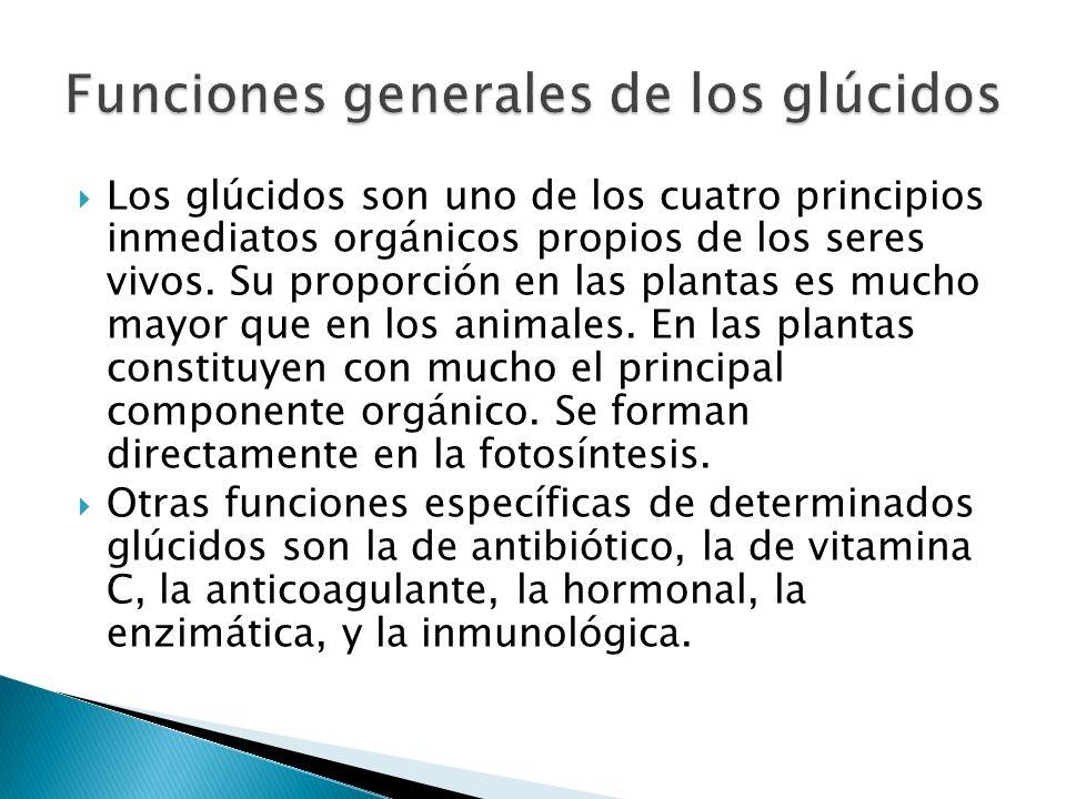 Los glúcidos son uno de los cuatro principios inmediatos orgánicos propios de los seres vivos. Su proporción en las plantas es mucho mayor que en los