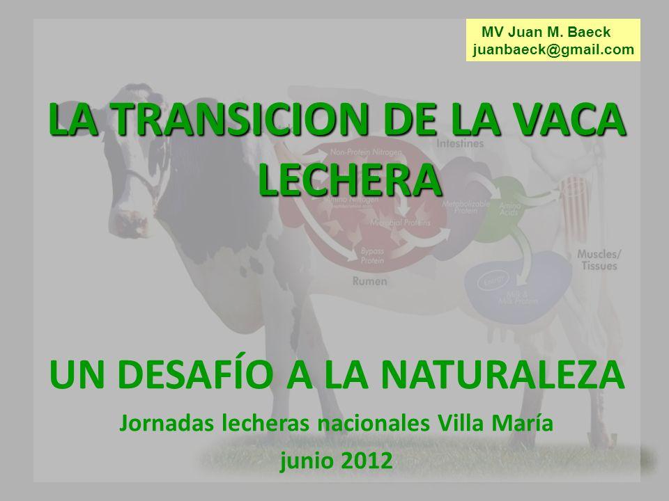 LA TRANSICION DE LA VACA LECHERA UN DESAFÍO A LA NATURALEZA Jornadas lecheras nacionales Villa María junio 2012 MV Juan M.