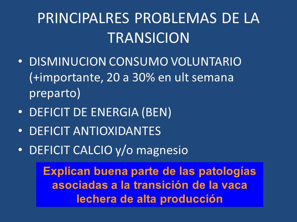 PRINCIPALRES PROBLEMAS DE LA TRANSICION DISMINUCION CONSUMO VOLUNTARIO (+importante, 20 a 30% en ult semana preparto) DEFICIT DE ENERGIA (BEN) DEFICIT ANTIOXIDANTES DEFICIT CALCIO y/o magnesio Explican buena parte de las patologías asociadas a la transición de la vaca lechera de alta producción