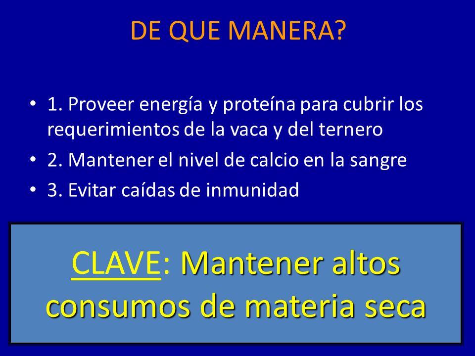 DE QUE MANERA.1.