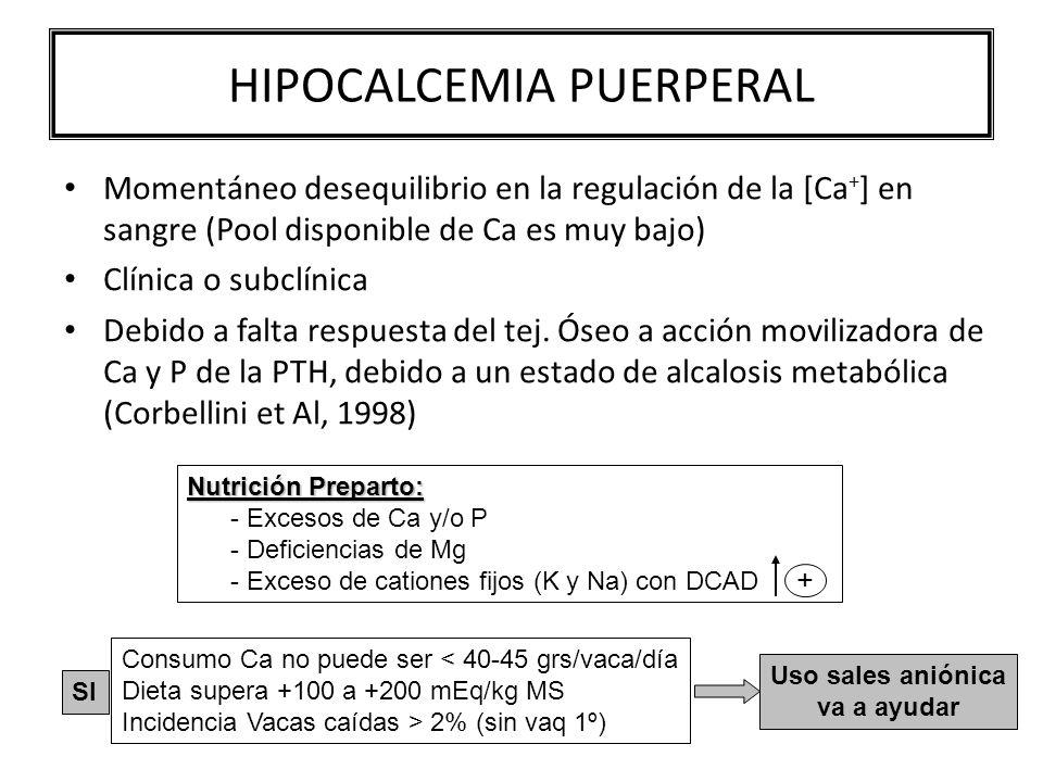 HIPOCALCEMIA PUERPERAL Momentáneo desequilibrio en la regulación de la [Ca + ] en sangre (Pool disponible de Ca es muy bajo) Clínica o subclínica Debido a falta respuesta del tej.