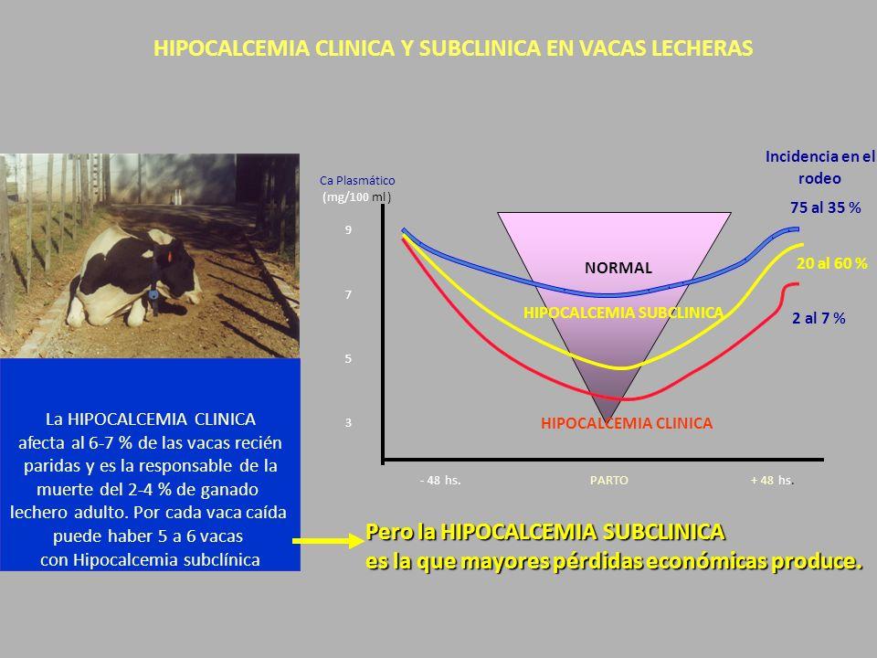HIPOCALCEMIA CLINICA Y SUBCLINICA EN VACAS LECHERAS ml) hs NORMAL Ca Plasmático (mg/100 9 7 5 3 PARTO- 48.+ 48.