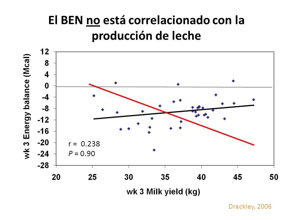 El BEN no está correlacionado con la producción de leche r = 0.238 P = 0.90 Drackley, 2006