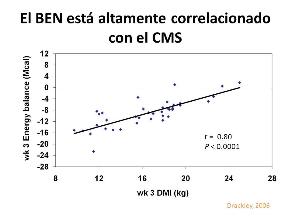 El BEN está altamente correlacionado con el CMS r = 0.80 P < 0.0001 Drackley, 2006