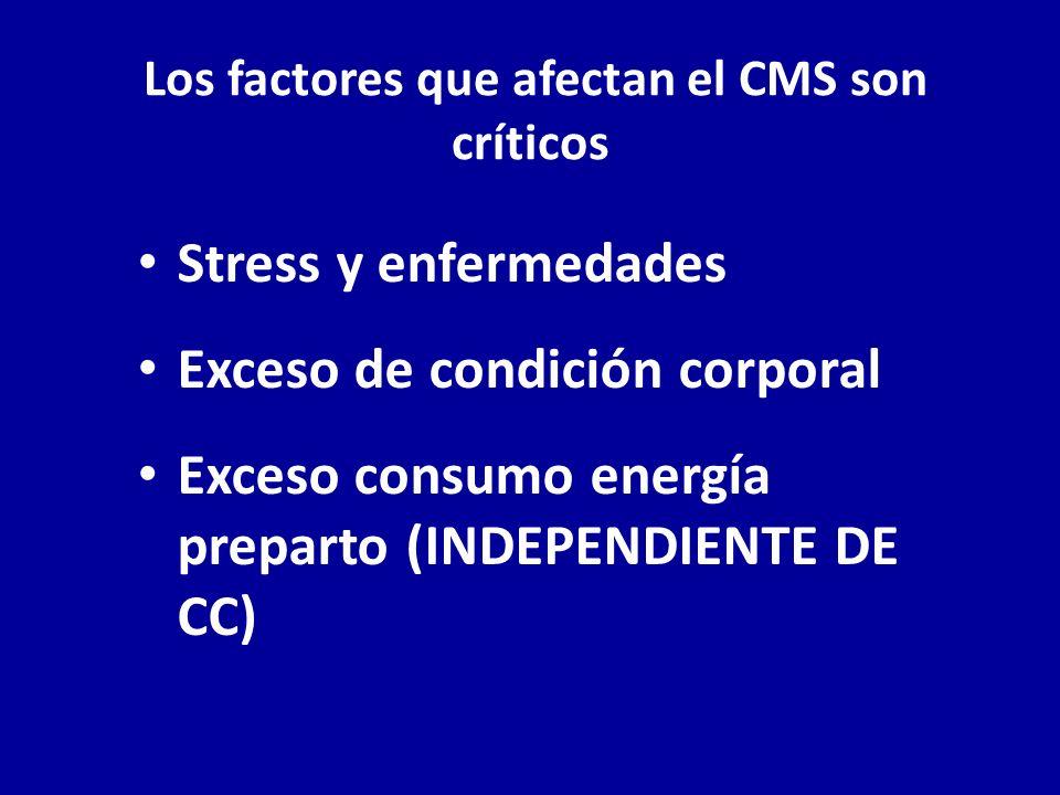 Los factores que afectan el CMS son críticos Stress y enfermedades Exceso de condición corporal Exceso consumo energía preparto (INDEPENDIENTE DE CC)