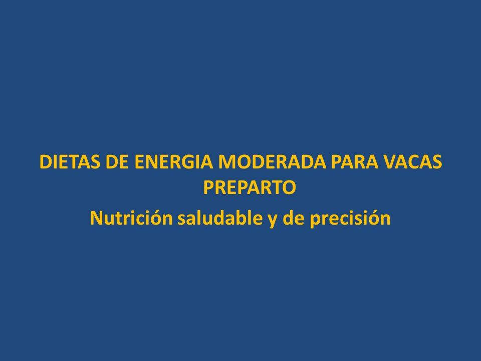 DIETAS DE ENERGIA MODERADA PARA VACAS PREPARTO Nutrición saludable y de precisión