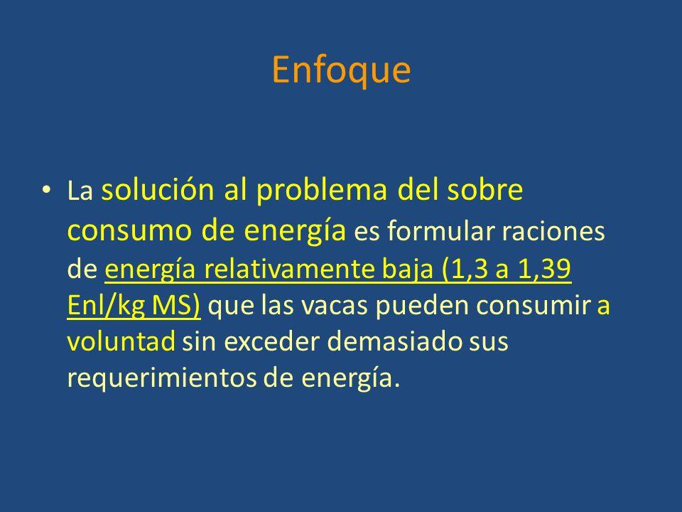 Enfoque La solución al problema del sobre consumo de energía es formular raciones de energía relativamente baja (1,3 a 1,39 Enl/kg MS) que las vacas pueden consumir a voluntad sin exceder demasiado sus requerimientos de energía.