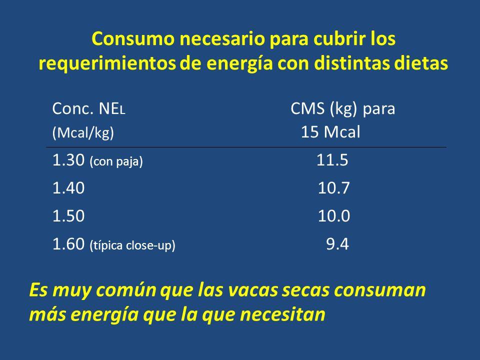 Consumo necesario para cubrir los requerimientos de energía con distintas dietas Conc.