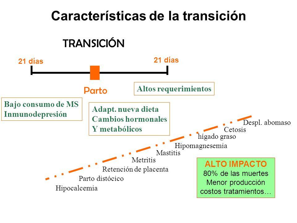 TRANSICIÓN Parto Bajo consumo de MS Inmunodepresión Altos requerimientos Características de la transición Cetosis Hipocalcemia Hipomagnesemia Parto distócico Retención de placenta Metritis Mastitis hígado graso ALTO IMPACTO 80% de las muertes Menor producción costos tratamientos… 21 días Despl.