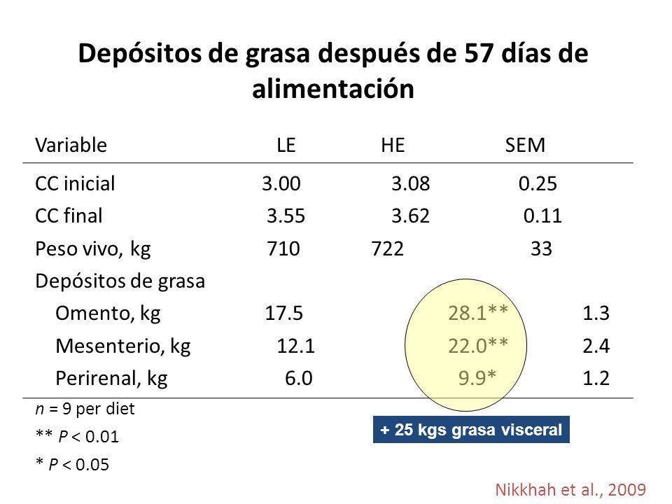 Depósitos de grasa después de 57 días de alimentación Variable LE HE SEM CC inicial 3.00 3.08 0.25 CC final 3.55 3.62 0.11 Peso vivo, kg 710722 33 Depósitos de grasa Omento, kg 17.5 28.1** 1.3 Mesenterio, kg 12.1 22.0** 2.4 Perirenal, kg 6.0 9.9* 1.2 n = 9 per diet ** P < 0.01 * P < 0.05 Nikkhah et al., 2009 + 25 kgs grasa visceral