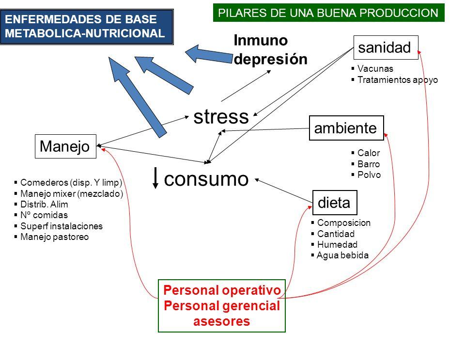 stress ambiente dieta Manejo Comederos (disp.Y limp) Manejo mixer (mezclado) Distrib.