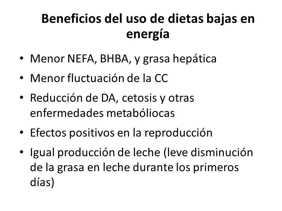 Beneficios del uso de dietas bajas en energía Menor NEFA, BHBA, y grasa hepática Menor fluctuación de la CC Reducción de DA, cetosis y otras enfermedades metabóliocas Efectos positivos en la reproducción Igual producción de leche (leve disminución de la grasa en leche durante los primeros días)