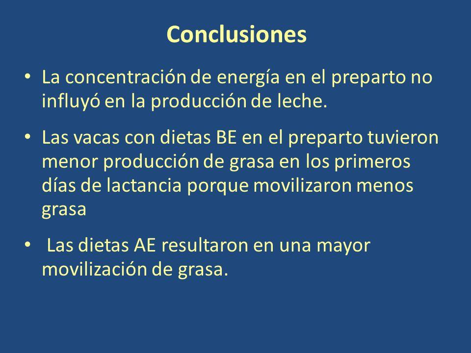 Conclusiones La concentración de energía en el preparto no influyó en la producción de leche.