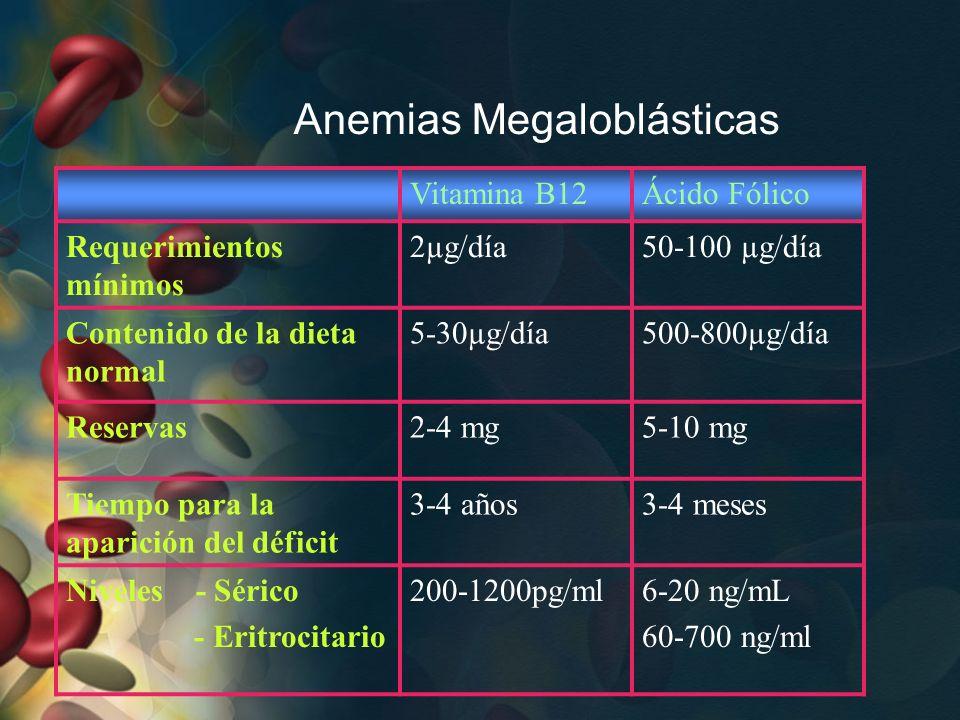 Anemias Megaloblásticas Vitamina B12Ácido Fólico Requerimientos mínimos 2µg/día50-100 µg/día Contenido de la dieta normal 5-30µg/día500-800µg/día Rese