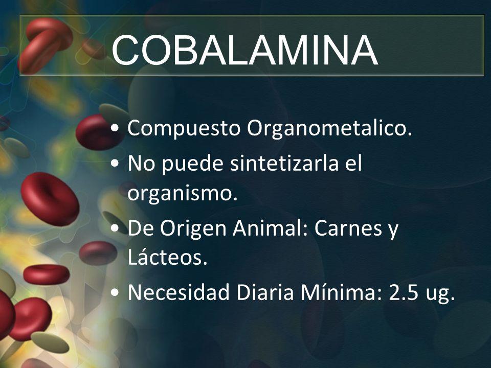 COBALAMINA Compuesto Organometalico. No puede sintetizarla el organismo. De Origen Animal: Carnes y Lácteos. Necesidad Diaria Mínima: 2.5 ug.
