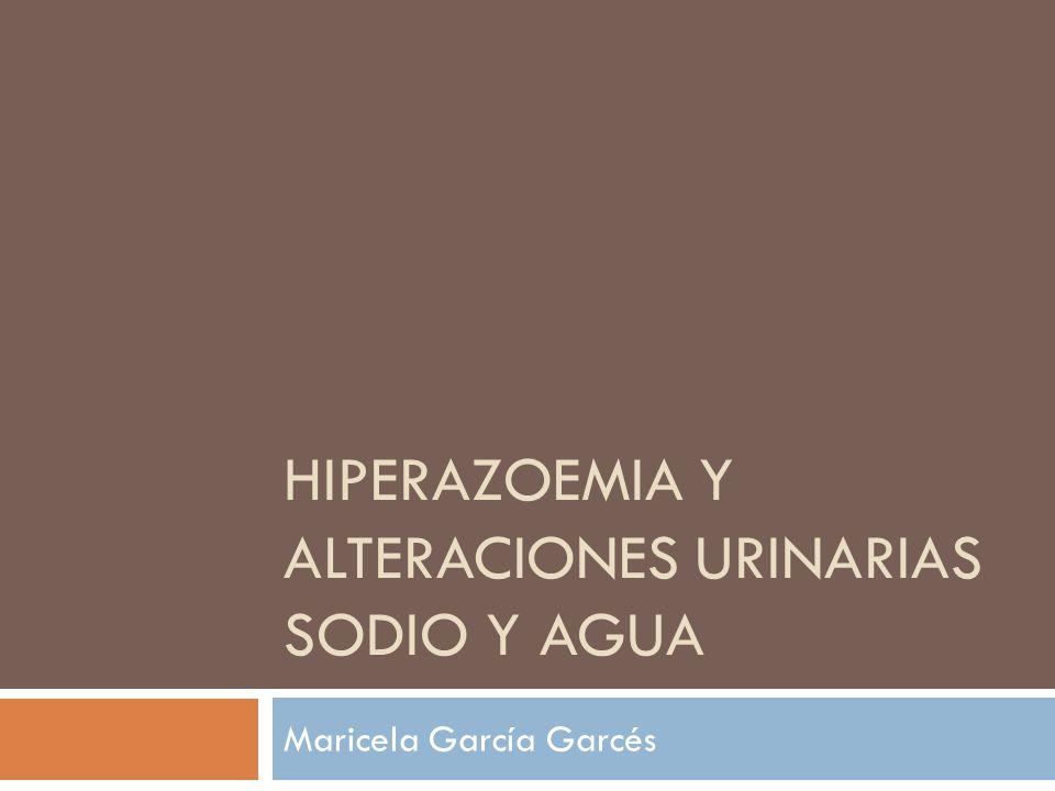 HIPERAZOEMIA Y ALTERACIONES URINARIAS SODIO Y AGUA Maricela García Garcés