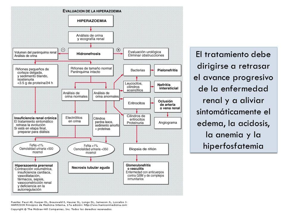 El tratamiento debe dirigirse a retrasar el avance progresivo de la enfermedad renal y a aliviar sintomáticamente el edema, la acidosis, la anemia y l