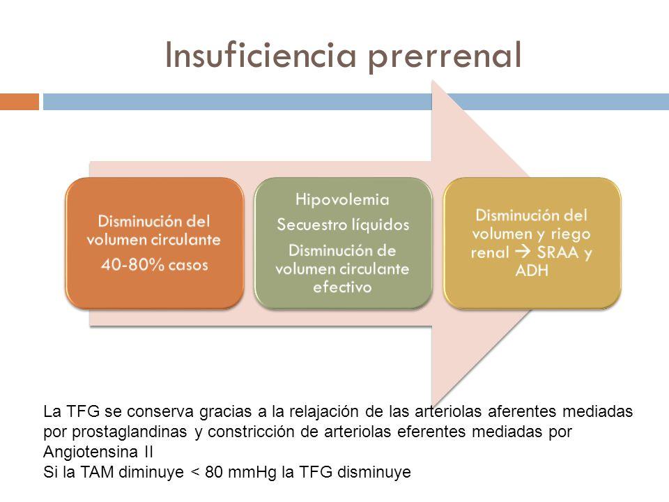 Insuficiencia prerrenal Disminución del volumen circulante 40-80% casos Hipovolemia Secuestro líquidos Disminución de volumen circulante efectivo Dism
