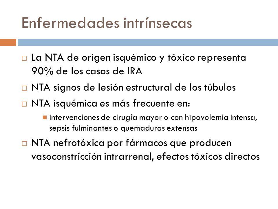 Enfermedades intrínsecas La NTA de origen isquémico y tóxico representa 90% de los casos de IRA NTA signos de lesión estructural de los túbulos NTA is