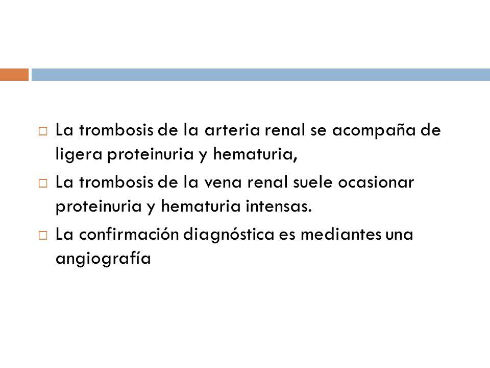 La trombosis de la arteria renal se acompaña de ligera proteinuria y hematuria, La trombosis de la vena renal suele ocasionar proteinuria y hematuria