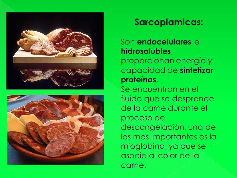 Sarcoplamicas: Son endocelulares e hidrosolubles, proporcionan energía y capacidad de sintetizar proteínas.