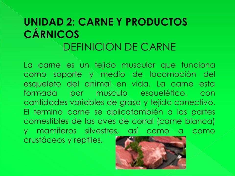 UNIDAD 2: CARNE Y PRODUCTOS CÁRNICOS DEFINICION DE CARNE La carne es un tejido muscular que funciona como soporte y medio de locomoción del esqueleto del animal en vida.