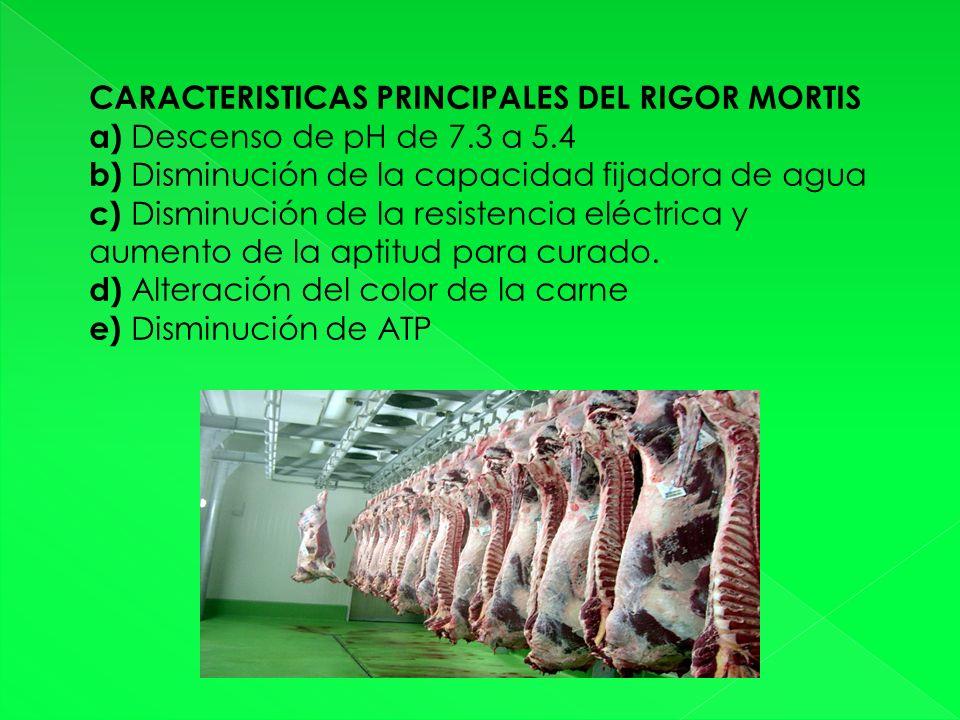 CARACTERISTICAS PRINCIPALES DEL RIGOR MORTIS a) Descenso de pH de 7.3 a 5.4 b) Disminución de la capacidad fijadora de agua c) Disminución de la resistencia eléctrica y aumento de la aptitud para curado.