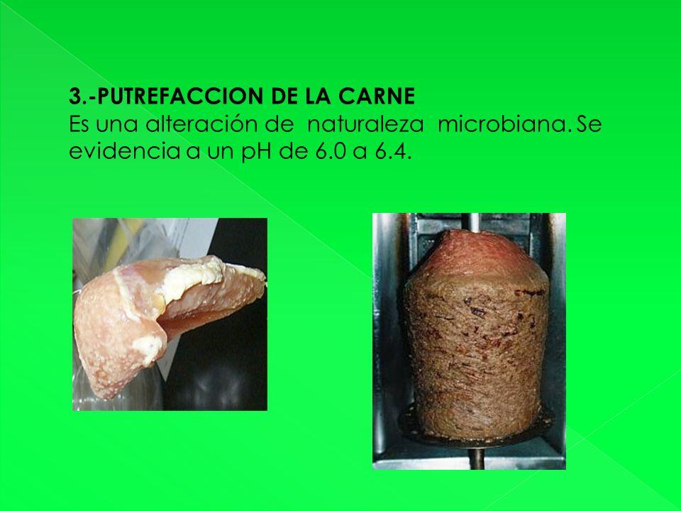 3.-PUTREFACCION DE LA CARNE Es una alteración de naturaleza microbiana.
