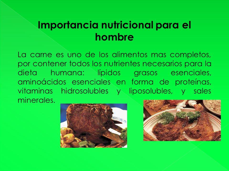 Importancia nutricional para el hombre La carne es uno de los alimentos mas completos, por contener todos los nutrientes necesarios para la dieta humana: lípidos grasos esenciales, aminoácidos esenciales en forma de proteínas, vitaminas hidrosolubles y liposolubles, y sales minerales.