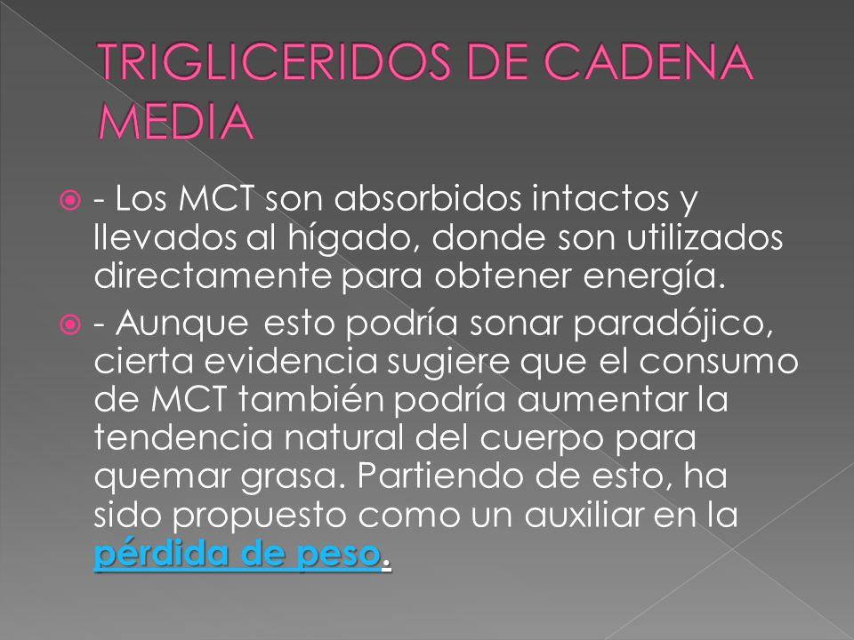 - Los MCT son absorbidos intactos y llevados al hígado, donde son utilizados directamente para obtener energía. pérdida de pesopérdida de peso. - Aunq