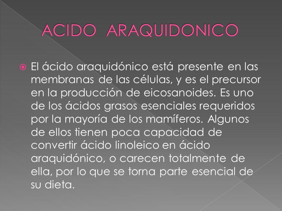 El ácido araquidónico está presente en las membranas de las células, y es el precursor en la producción de eicosanoides. Es uno de los ácidos grasos e