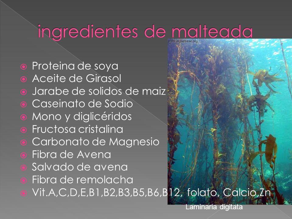 Proteina de soya Aceite de Girasol Jarabe de solidos de maiz Caseinato de Sodio Mono y diglicéridos Fructosa cristalina Carbonato de Magnesio Fibra de